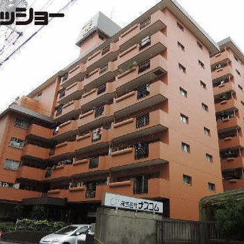 トーカングランドマンション栄 716号室