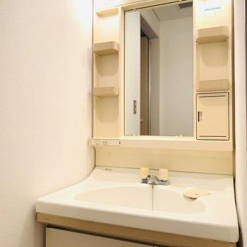大きめのボウルの洗面所。