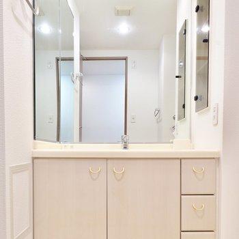 脱衣所に入ると壁一面が鏡の素敵な洗面台。自分磨きが捗りそう…!