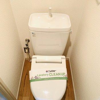 シンプルでお手入れがしやすそうです!床に置物とか置いてトイレ中も楽しく!