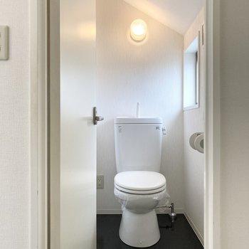 玄関横にある扉を開けるとトイレ。