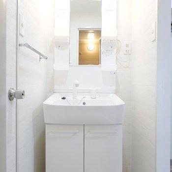 入って右手には鏡の大きな洗面台。
