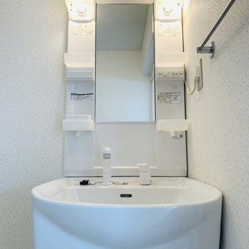 脱衣スペースを入って右に洗面所。深めのまるっとしたボウルが使いやすそうですね。