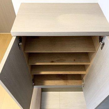下段のシューズボックスは1段に2足ほどのサイズ感の可動棚。