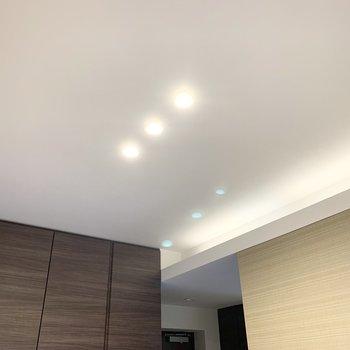 天井の3連ダウンライトが素敵です。