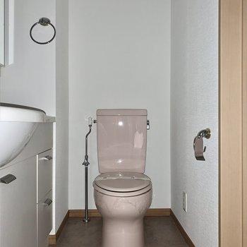 トイレは脱衣所内にあります。※写真は通電前のため、フラッシュ撮影をしています