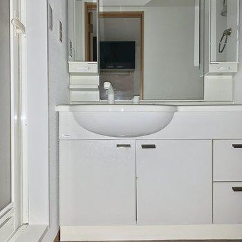 洗面台の鏡は大きいです。※写真は通電前のため、フラッシュ撮影をしています