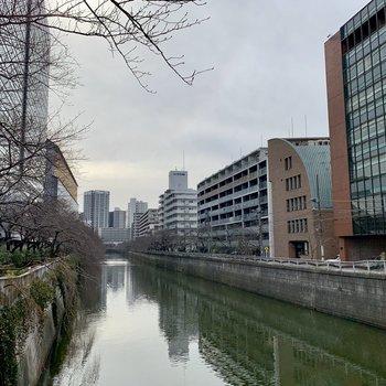 お部屋の近くには目黒川が。春は桜が咲きますよ。
