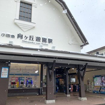 最寄りは小田急線〈向ヶ丘遊園〉駅。
