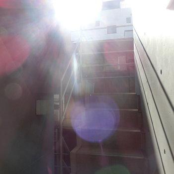 日当たりの良い共用階段