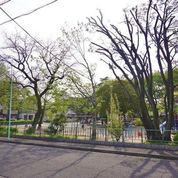 奥の駐車場の先の公園は子どもたちで賑わっていました。