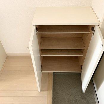 シューズボックスは1段に2足くらいのサイズ感の可動棚タイプ。
