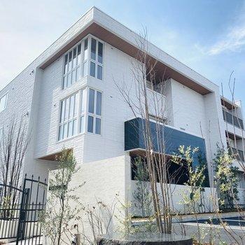 おしゃれな建物とグリーンとのコントラストが素敵。