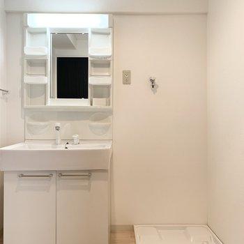 ユーティリティ入って正面に洗濯機置場とシャンプードレッサー。