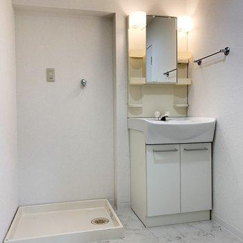 水廻り入って正面は洗濯機置場と洗面台。