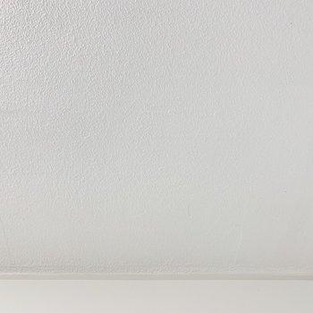 天井は真っ白な塗りです。