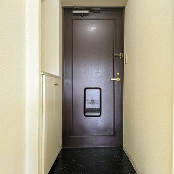 シックな雰囲気の扉の玄関です。