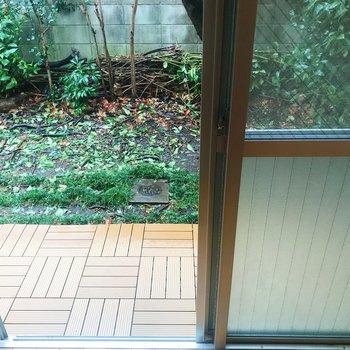 正面窓から庭へ。広々としていますよ。