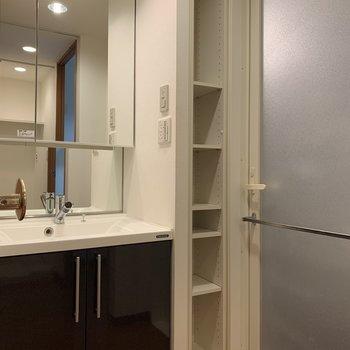 大きな鏡がついた洗面台は、朝の身支度も悠々とできますね!(※写真は4階の同間取り別部屋のものです)