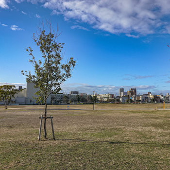 休日にはすぐ目の前に川名公園でゆったりと散歩を楽しみたい。