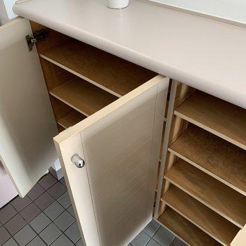 シューズボックスはこちら※写真は反転同間取り別部屋のもの。