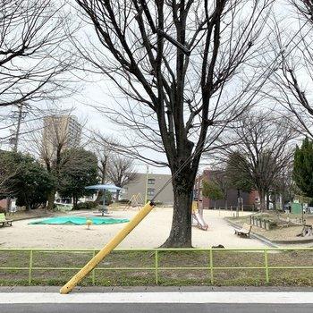 マンションのお隣が公園で緑のある環境です。