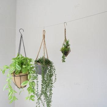 植物をかけてもよし。洗濯物でもよし