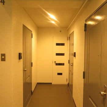 共有部】意外と綺麗な廊下と