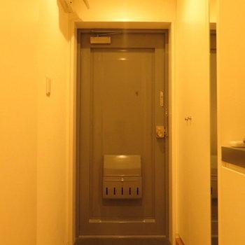 玄関もさることながら、とにかくシューズボックスが大きかったです ※別部屋写真