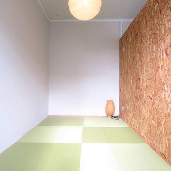 畳と壁の色の対比がおもしろいですね