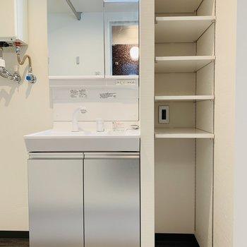 洗面台横には電源もある可動式収納棚