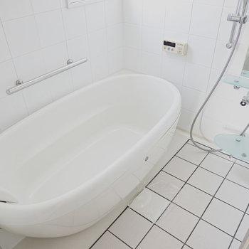 ヘッドレスト付きの卵型バスタブで日頃の疲れを癒やす入浴を。