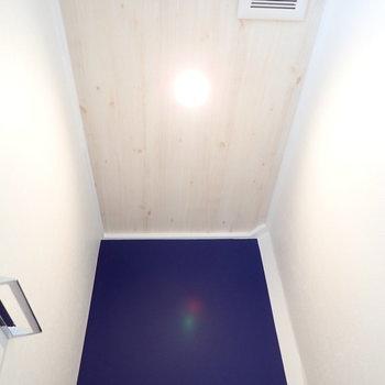 トイレの天井もお部屋と同じく!