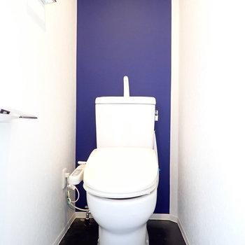 かわいい海っぽいトイレ。