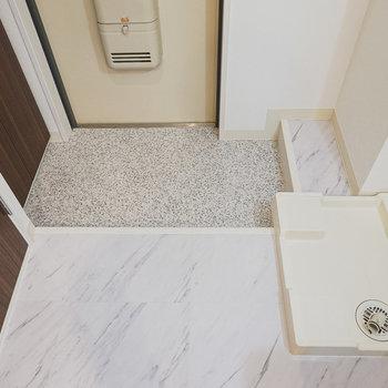 玄関は広すぎず狭すぎず。そのすぐ横には洗濯パンがあります。