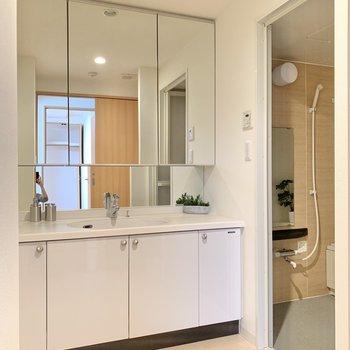独立洗面台はたくましいサイズ感。身だしなみが綺麗に整う予感しかしません..!