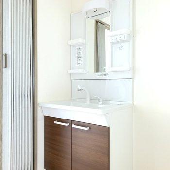 洗面台は丁度良いサイズ感。シックな色合いが良き。