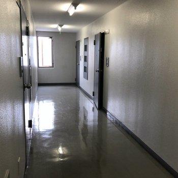 共用廊下もきれいに整備されていました。