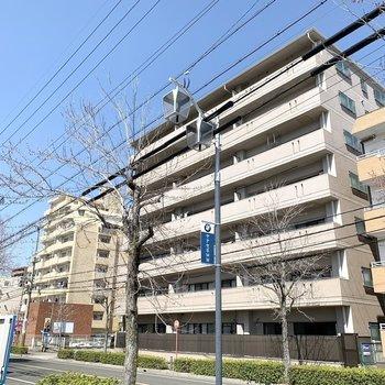 街路樹の素敵な道路沿いに建つ、7階建ての鉄筋コンクリートマンションです。