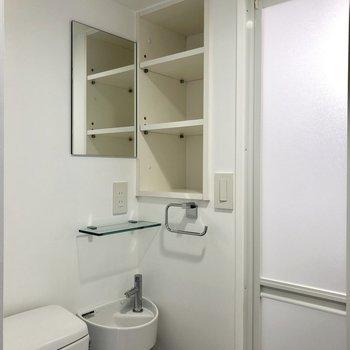 手洗い場と収納棚もついています。
