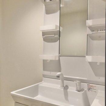 洗面台にはシャワー付きです。