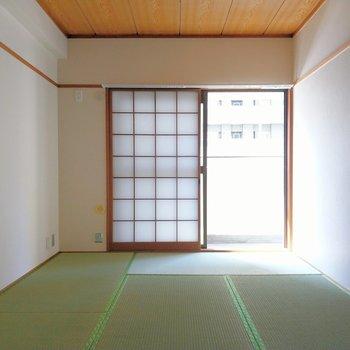 お隣は和室。とても綺麗な畳。
