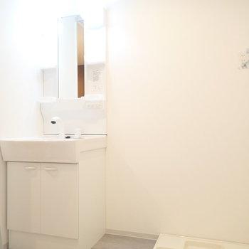 洗面台と洗濯機です。タオルを置けそうです。