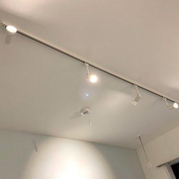 そんな空間を照らすのはライティングレール※写真は3階の同間取り別部屋のものです