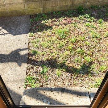 下階の洋室から繋がる庭。様々な使い方ができますね。
