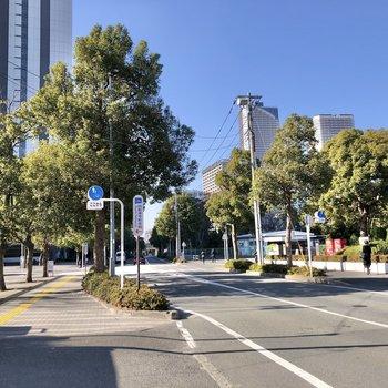 武蔵小杉駅まで歩いてみましょう。通りでは自然を感じられます。