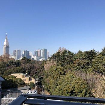 ビル群と新宿御苑が見えます。