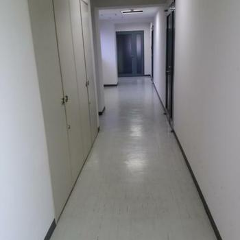 こちらは共有部の廊下