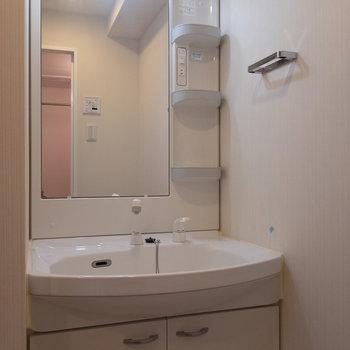 タオル掛け設置済みがうれしい。※写真は4階の反転間取り別部屋のものです