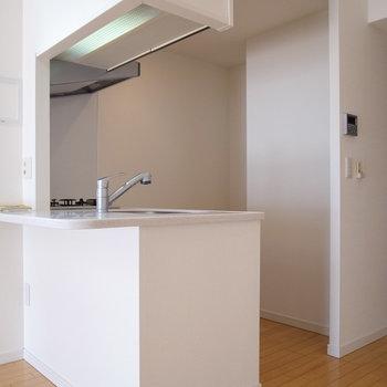 【LDK】ちょっとしたカウンターもついてます。奥に冷蔵庫を置きましょう。